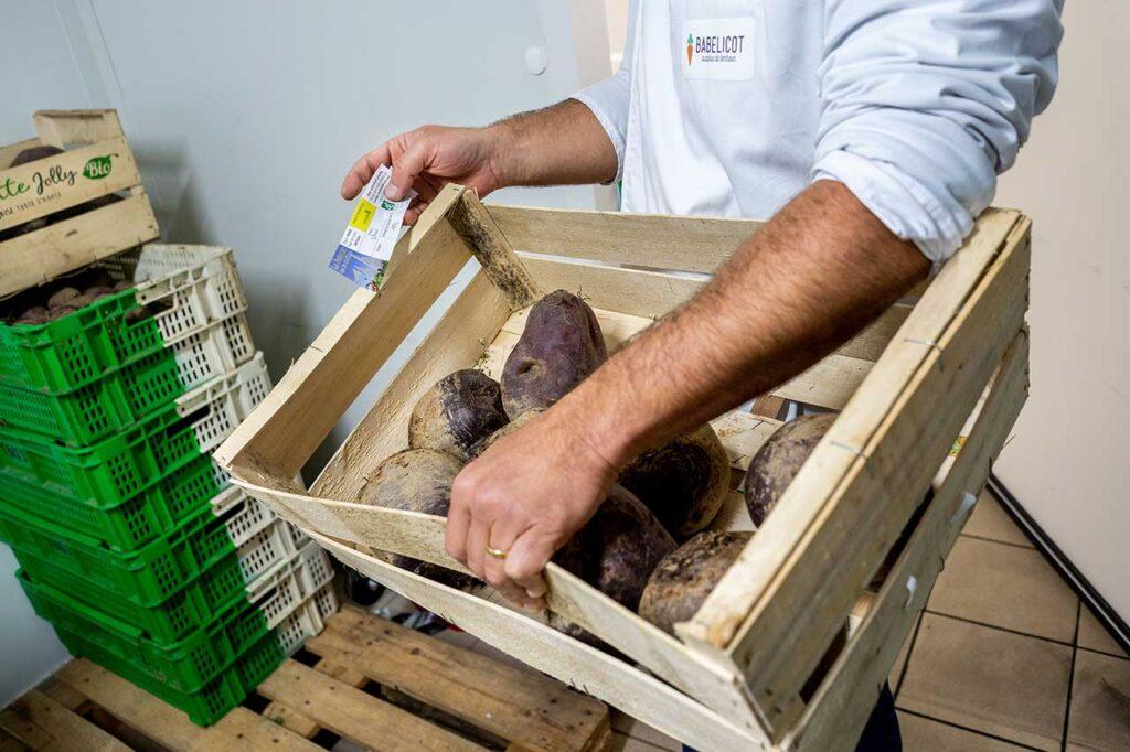 Légumes bio et petits producteurs finistériens Babelicot