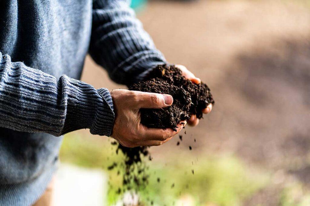 Terre compost jardin naturel